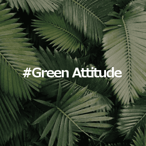 comeeti-presta-green-attitude-300x300