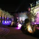 Larsen-Petit-Palais-lumieres